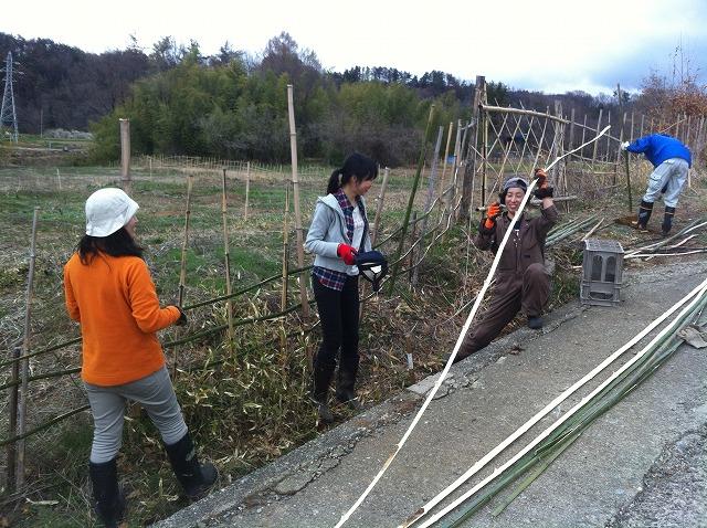 援農者と竹柵作り
