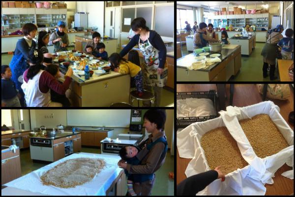 醤油作り 第二工程(麹造り)