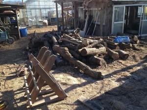 今日の手伝いは薪作り