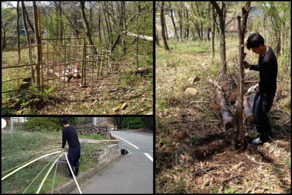 竹柵修理、竹門作り