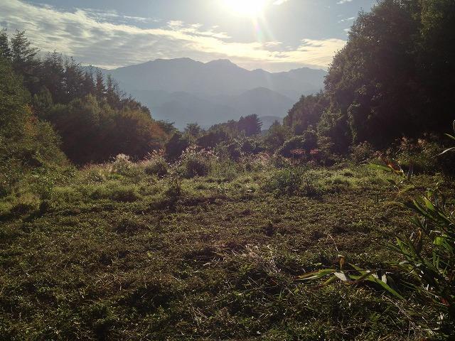 小屋作りワークショップ準備 ~草刈り~