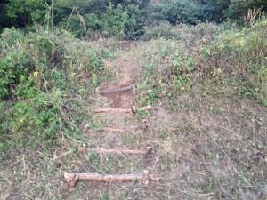 階段二つ目♪