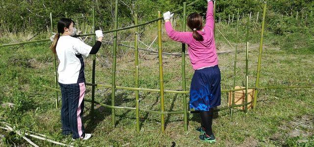 学生ボランティアさんと ~Day3 竹柵+採れたて食材~