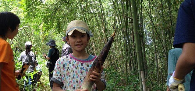 里山活用 第一回 ~竹・たけのこを楽しもう!~