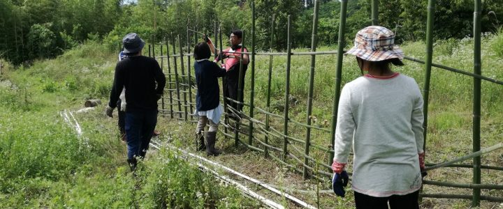里山で遊ぼう!2018 第三回 竹で柵作り