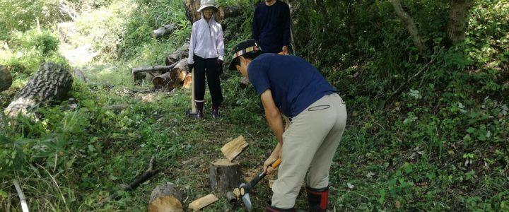 木と土の家作りイベントの準備 ~cordwood作り~