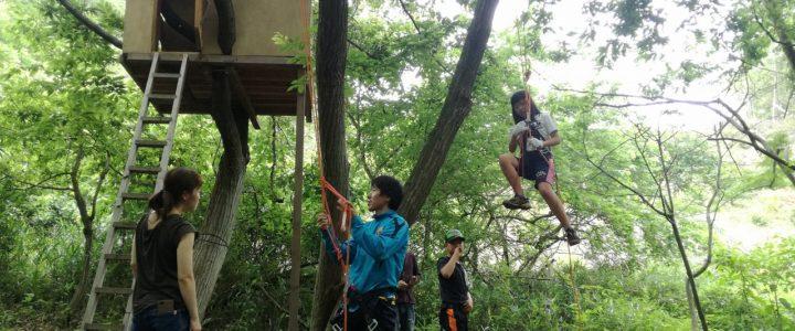 木登りイベントの様子