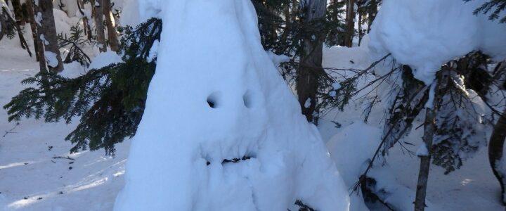 雪の縞枯山へ ~snow angelと雪滑り~